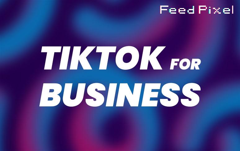Guía de TikTok para empresas